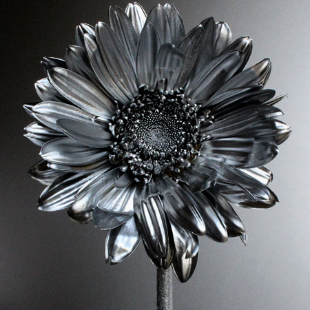 http://www.tallerbdn.cat/wp-content/uploads/2017/01/Full-Metal-Jacket_Gerbera-2013.jpg